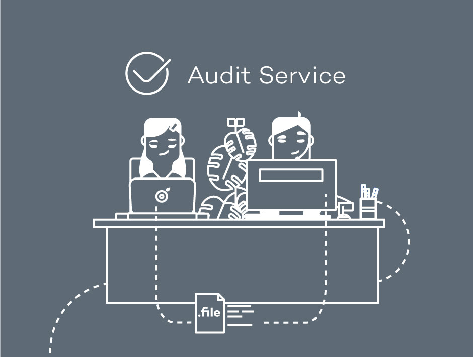 audit service logo