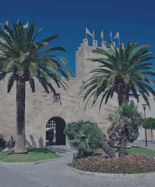 Alcúdia City Council Case Study
