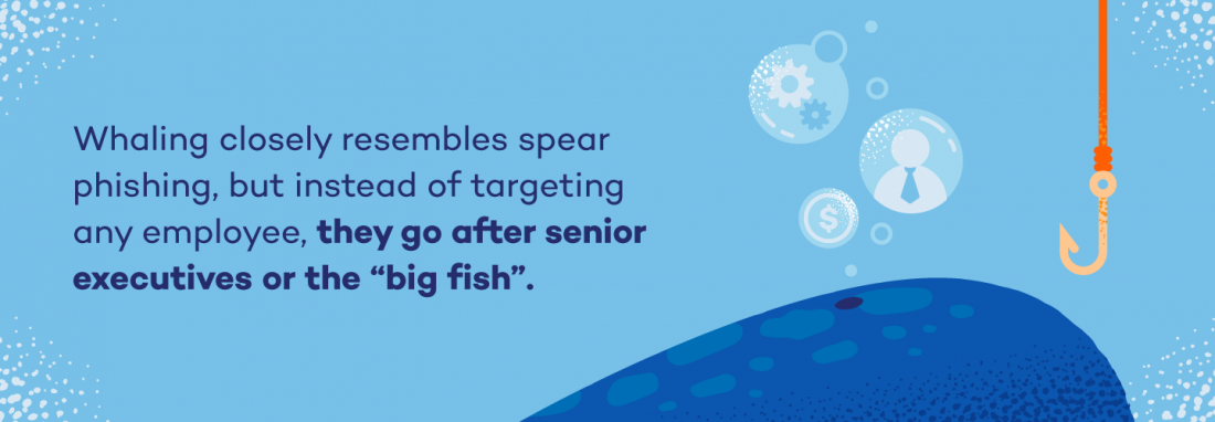 "Whaling closely resembles spear phishing, but instead of targeting any employee, they go after senior executives or the ""big fish."""