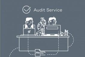 logo audit service